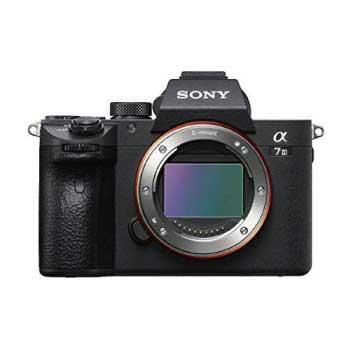 ミラーレス一眼 α6400 ボディ ブラック + SIGMA F1.4 30mm 単焦点レンズ 画像